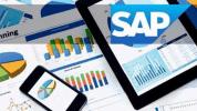SAP Nedir ?