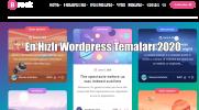 En Hızlı Wordpress Temaları